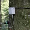 El monitoreo ecofisiológico de Decentlab se muestra en Swiss Television SRF